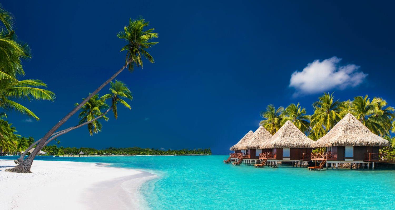 Tahiti Yacht Charter And Fiji Yacht Vacation In The South