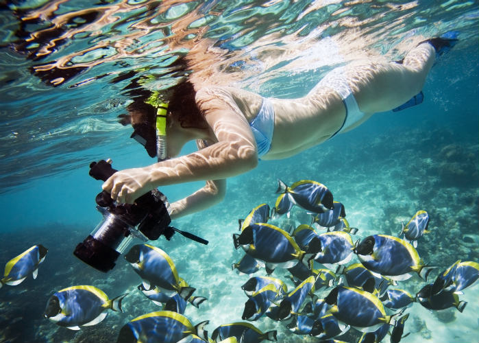 Top snorkeling spots in the florida keys florida yacht for Best fishing spots in the keys